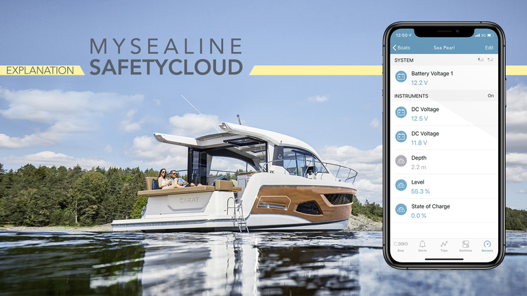 Video tutorial on the mysealine safety cloud